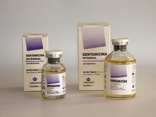 gentamicina inyectable
